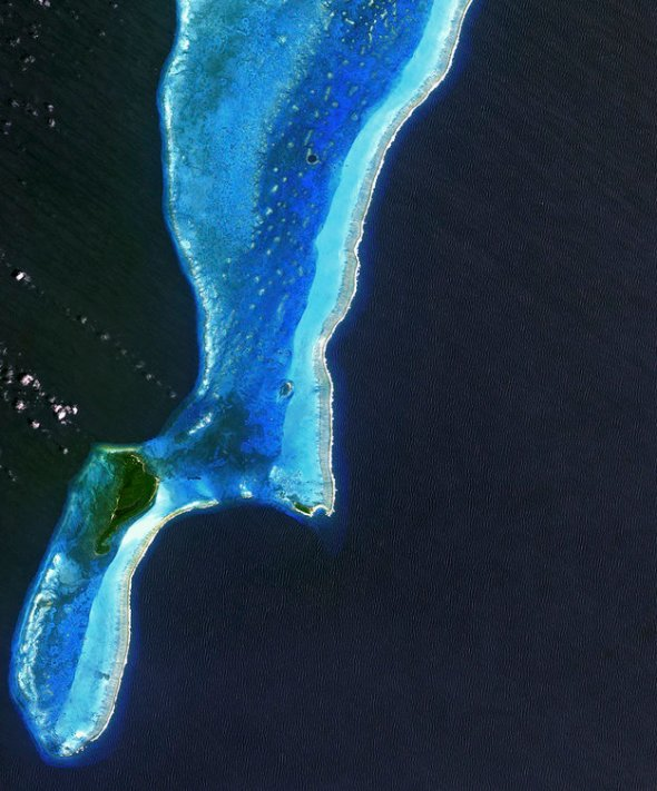ESA, Belize Barrier Reef, Lighthouse Atoll